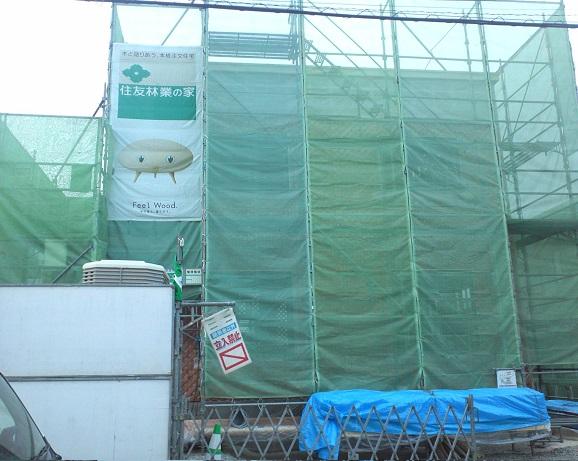 緑の幕.jpg